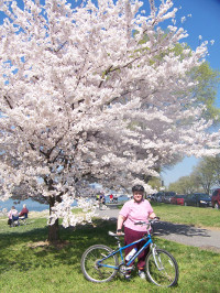 Katherine Padilla at the 2007 National Cherry Blossom Festival in Washington, D.C.